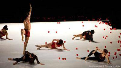 Backhausdance dancers performing on stage surrounded by red balls