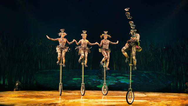 Unicycles with bowls performing in Cirque's Totem show