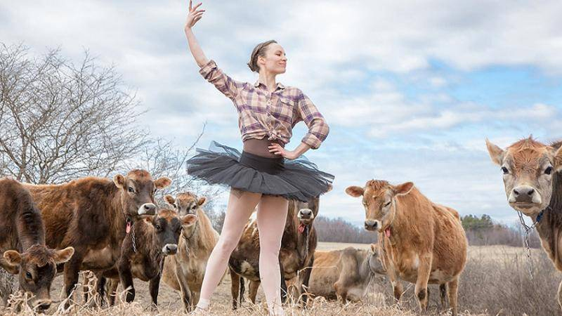 Dancer Megan Stearns, in a black tutu and plaid shirt, striking a ballet pose in a field with brown cows.